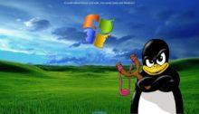 linux-wallpaper-e1435338798183-220x126 Linux для компании (эволюционная статья) UBUNTU БЛОГ